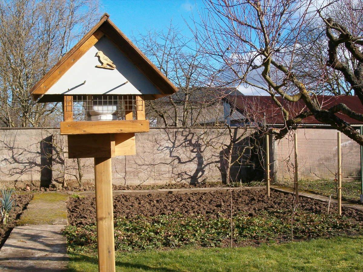Comment faire un mangeoire pour oiseaux - Comment faire fuir les oiseaux ...